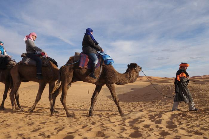 Camel Trekking Merzouga, Auberge Café du Sud