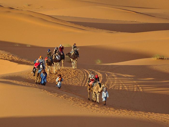 Morocco Camel Trek, Auberge Café du Sud