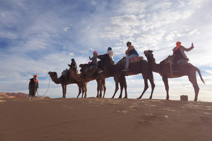 Morocco Camel Trekking, Auberge Café du Sud